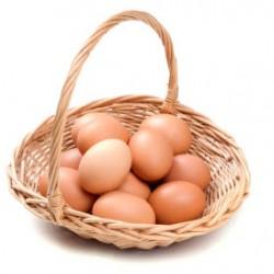 Crea el portafolio de acciones óptimo – No pongas todos tus huevos en la misma canasta